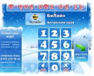 Новый год, зимний скин, платежное ПО